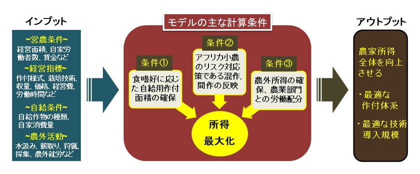 図1 アフリカ小農特有の条件を反映した農業経営計画モデル