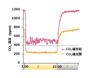 図2 ダイズ栽培時における人工気象器内のCO2濃度は、昼間(明期)に著しく低下する