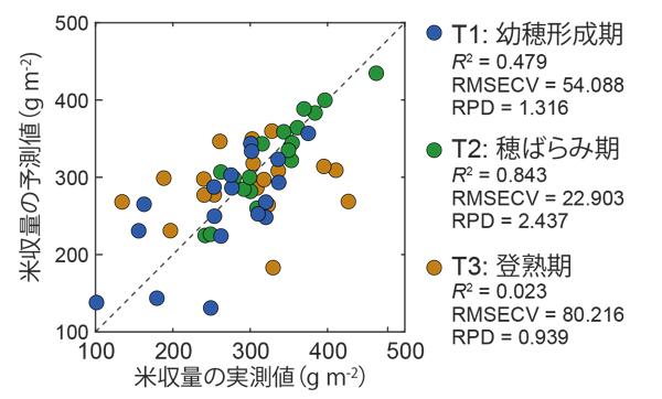 図2 米収量の実測値とPLS回帰分析による予測値の関係