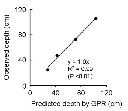 Fig. 2. Relationship between predicted depth and observed soil depth at which the petroplinthic horizon starts (d in Fig. 1)