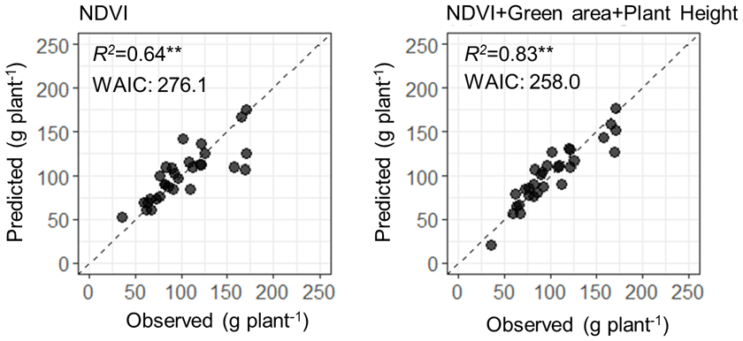 Fig. 3. Improvement of the model prediction using additional parameters of green area and plant height.