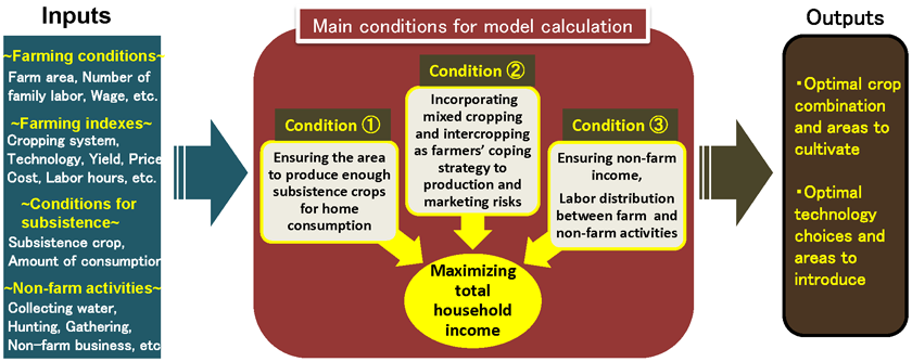 Fig. 1. A farm management model reflecting the conditions of African smallholder farming