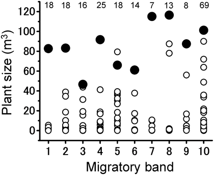 Fig. 2. Plant-size distribution at each site where 10 migratory bands of Schistocerca gregaria roosted.
