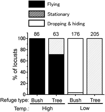 Fig. 4. Defensive responses exhibited by adults including flying, stationary, and dropping and hiding by using plants as a refuge.
