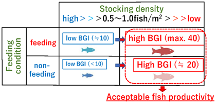 Fig. 4. Schematic image of the effects of stocking density and feeding condition as contributory factors to fish productivity (BGI)