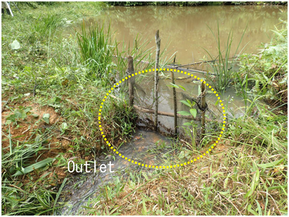 Fig. 2. Situation at the reservoir (B2)