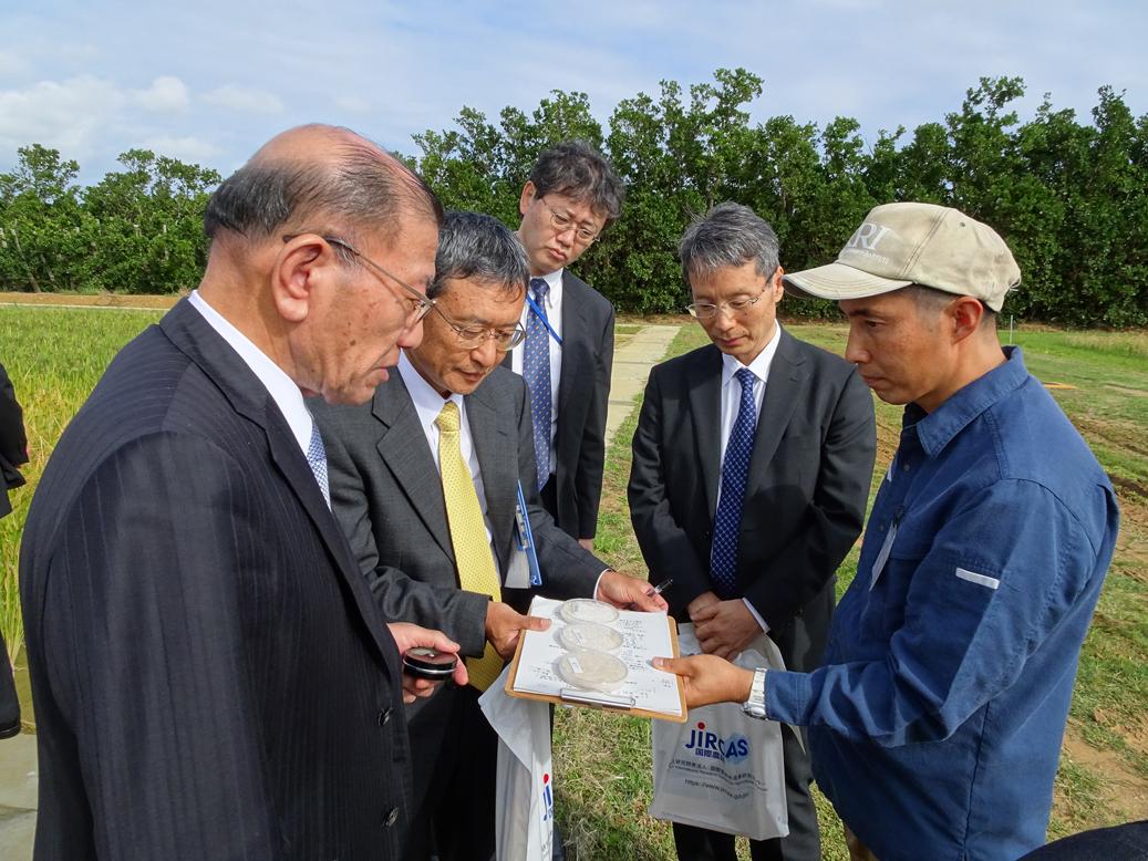 有望なインド型イネの玄米を見ながら意見交換する宮腰沖縄担当大臣(左端)