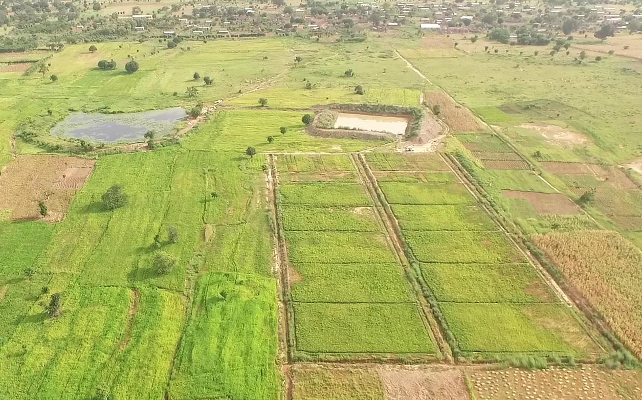 親子ため池システムにより、溢流する水資源を活用して稲作への補給灌漑を行うことができます。写真左上:既存の小規模ため池(親池)、写真右上:親池の越流水を貯留する新規ため池(子池)、写真右下:補給かんがいによる稲作
