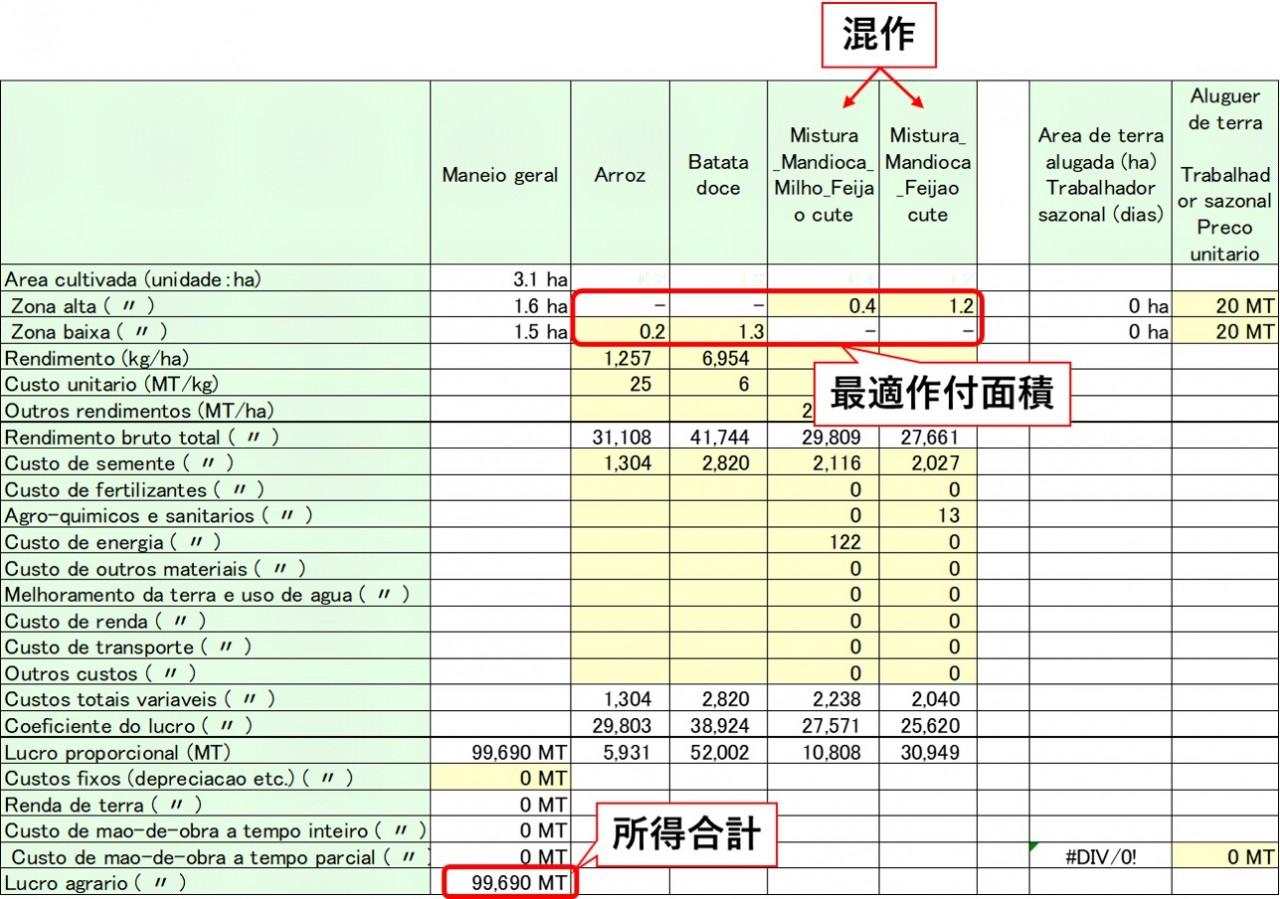 BFMmzにより作成された営農計画案の出力画面