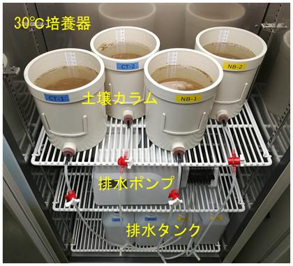 図1 土壌カラム実験装置