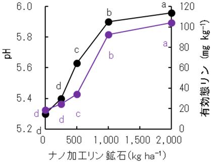 図3 ナノ加工リン鉱石施用による土壌化学成分の変化