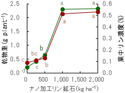 図4 ナノ加工リン鉱石施用がホウレンソウの生育に及ぼす影響
