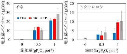 図2 炭酸ナトリウム添加焼成物および炭酸カリウム添加焼成物の施用効果 左)イネ、右)トウモロコシ