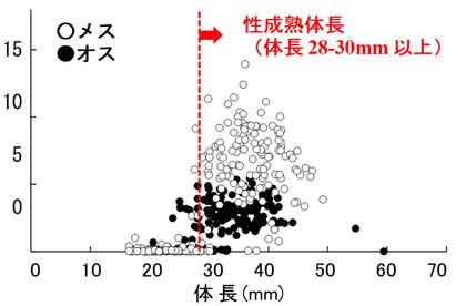 図3 パケオの体長とGSIの関係
