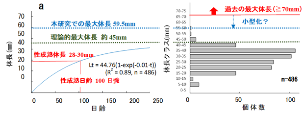 図4 パケオ個体群の成長モデル(a)と体長頻度分布(b)