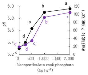 Fig. 3. Effects of nanoparticulate phosphate