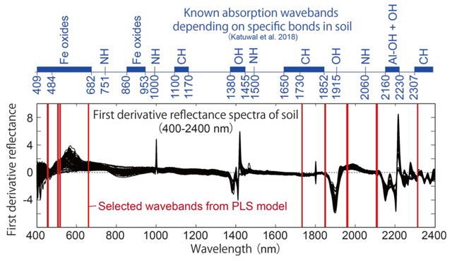 Fig. 3. Selected wavebands (red bars) in the PLS model
