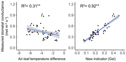 Fig. 2. Relationships between indicators based on thermal imaging and measured stomatal conductance. Gray area represents 95% confidence interval of the regression line.