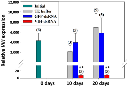 Fig. 2. Suppression of SGP-G gene expression following VIH-dsRNA injection. Groups are indicated as follows. Initial: non-treatment; TE buffer: shrimp injected with TE buffer as a vehicle control; GFP-dsRNA: shrimp injected with dsRNA for green fluorescen
