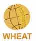 CGIAR Research Program on Wheat