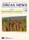 JIRCASニュース82号表紙